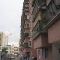 深圳竹园小区图片