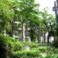 深圳中海大山地小区图片