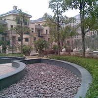 深圳公园大地小区图片