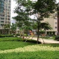 深圳百仕达花园二期小区图片