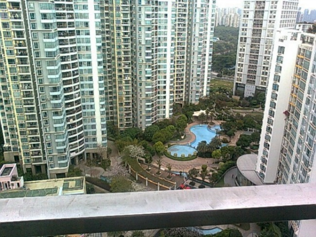 深圳滨海之窗小区图片