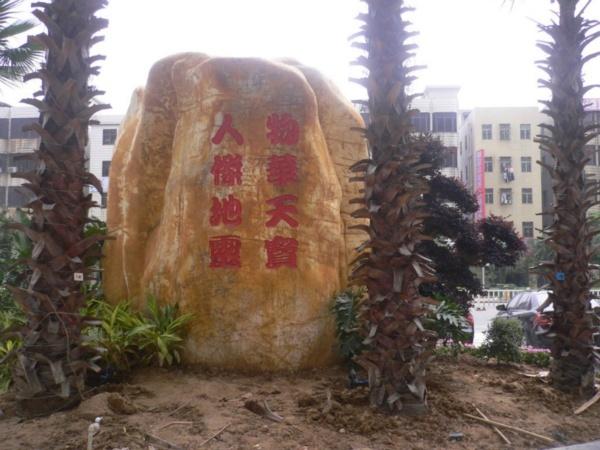 深圳石湖苑小区图片