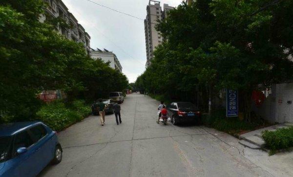 深圳清湖名苑图片