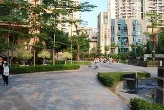 深圳租房网房源图片