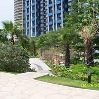 深圳半岛花园A区图片