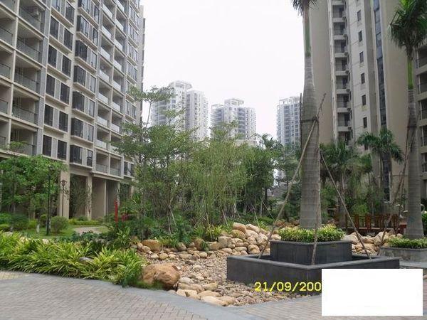 丽江花园 精装大三房 红本在手满5年随时看房