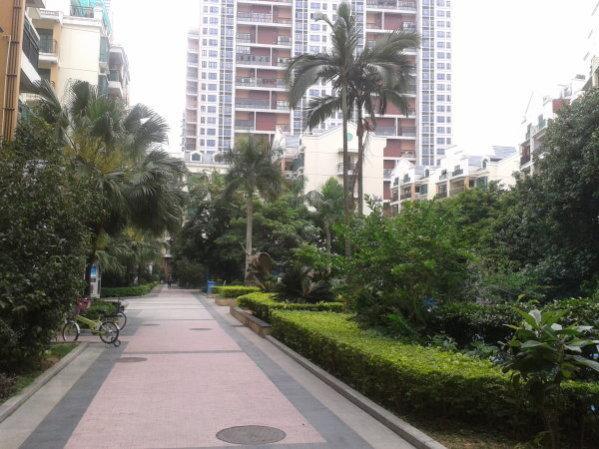 深圳福安西小区外景图