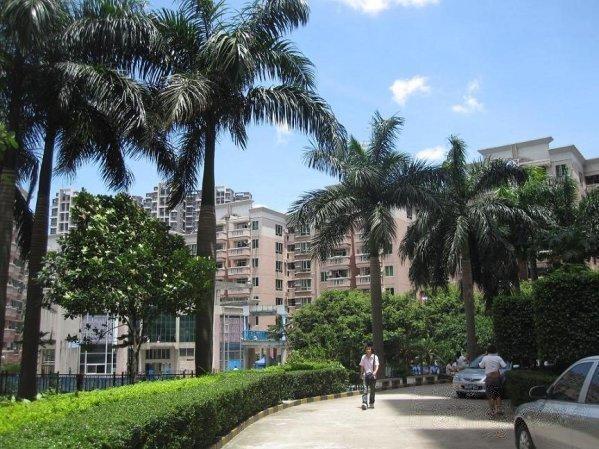 推推99深圳房产网中兆花园外景图